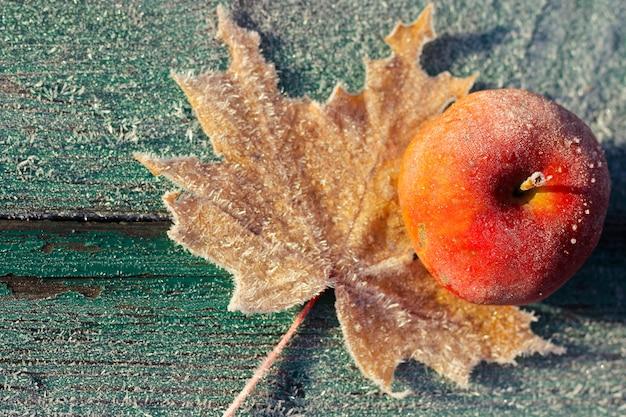 Pomme et feuille couvertes de givre