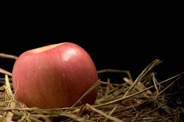 Pomme. paille. sur bois fond noir
