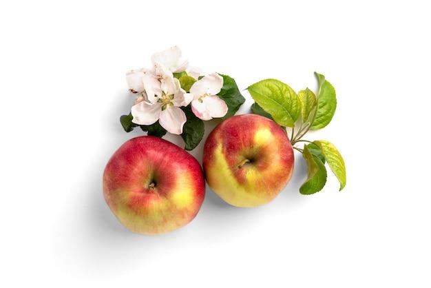 Pomme rouge avec des fleurs isolé sur blanc