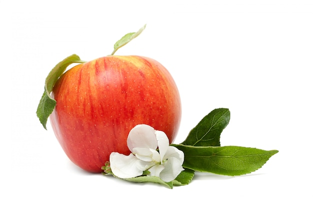 Pomme rouge mûre sur blanc