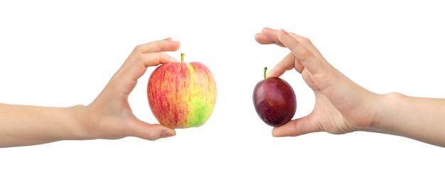 Pomme rouge et prune dans les mains, bannière, concept de fruits frais et sains, bannière, isolé sur fond blanc photo