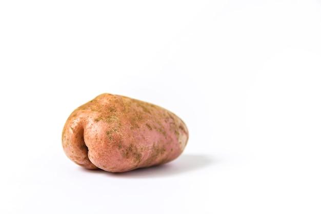 Pomme de terre crue drôle en forme de cul sur fond blanc.