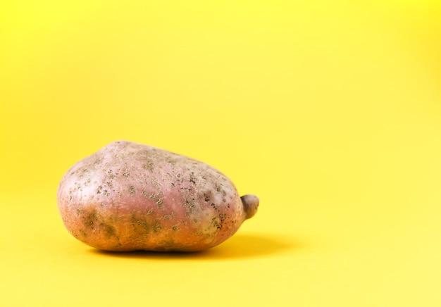 Pomme de terre crue sur fond jaune vif.