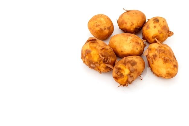 La pomme de terre crue se nourrit d'isolé. pommes de terre fraîches sur fond isolant blanc. récolte précoce. légumes non lavés. mise au point sélective. concept de compétence culinaire. place pour une inscription ou un logo