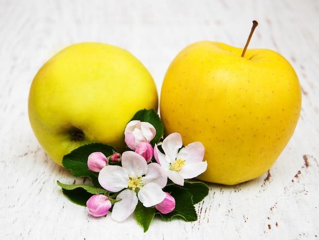 Pommes et fleurs de pommier
