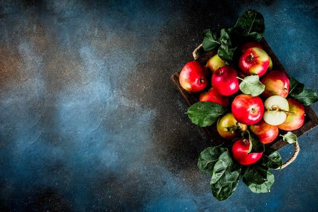 Pommes fraîches crues dans un plateau en bois