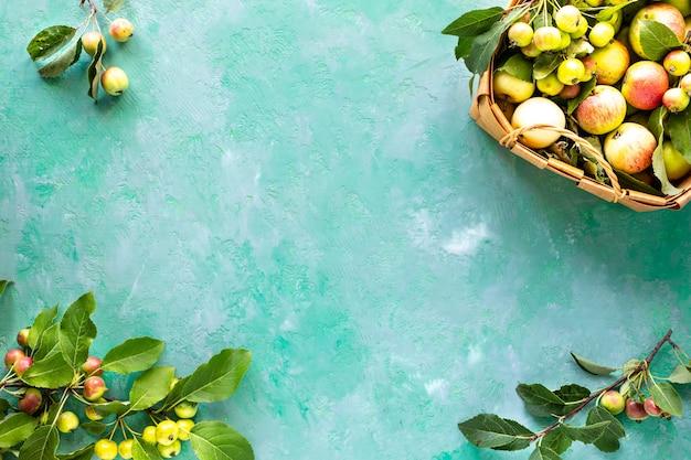 Pommes fraîches dans un panier sur une surface verte
