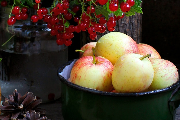 Pommes de jardin d'été cassis