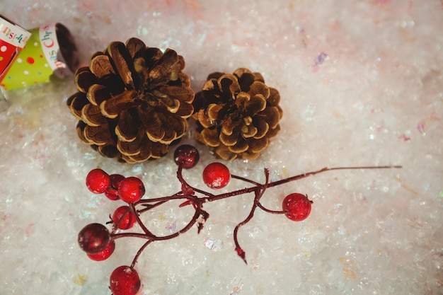 Pommes de pin, cerises et craquelins de noël sur la neige