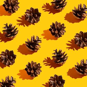 Pommes de pin avec motif ombres longues et dures