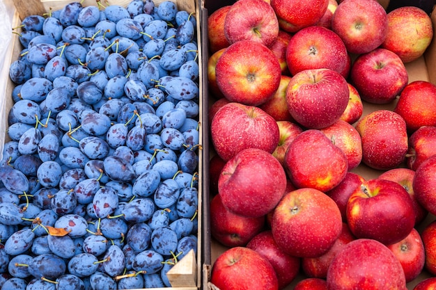Pommes et prunes fraîches fermiers au marché en plein air local.