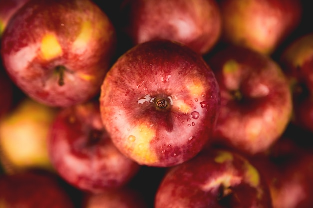 Pommes rouges biologiques fraîches sur fond noir