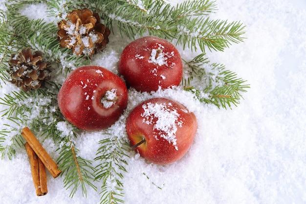 Pommes rouges avec des branches de sapin et des bosses dans la neige se bouchent