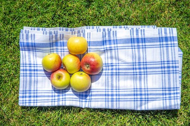 Pommes rouges et jaunes sur un drap et l'herbe verte dans un parc