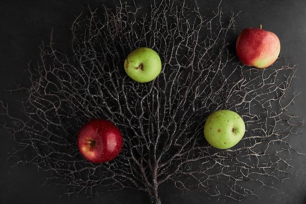 Pommes rouges et vertes isolées sur une branche d'arbre sec, vue de dessus.
