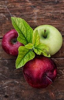 Pommes rustiques fraîchement récoltées