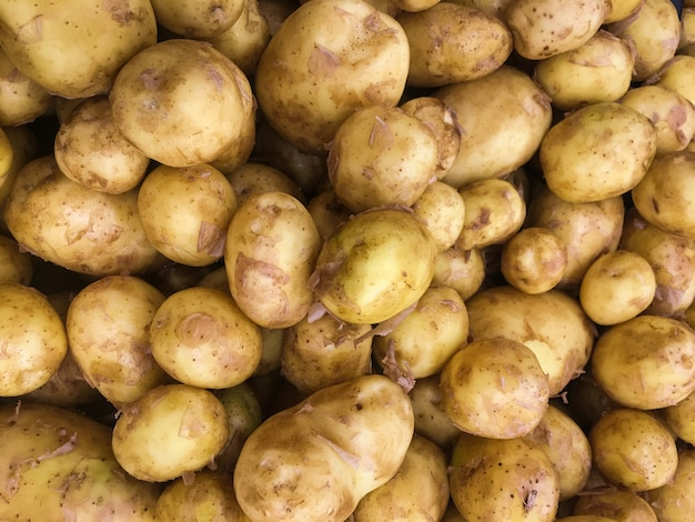 Pommes de terre biologiques fraîches sur pied en fond de supermarché