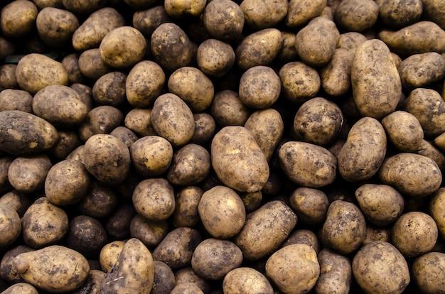Pommes de terre biologiques fraîches vendues sur le marché