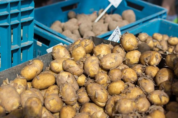Pommes de terre dans des caisses à vendre
