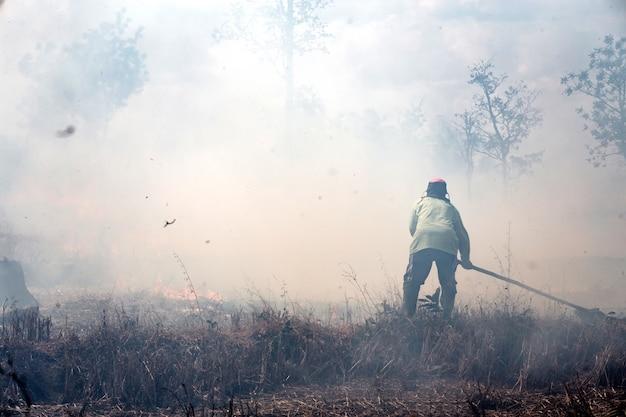 Pompier travaillant avec un feu de forêt