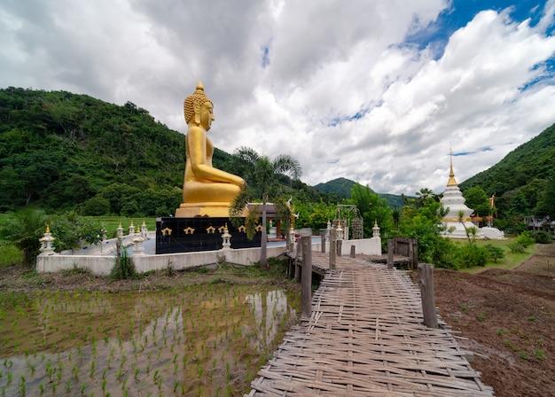 Pont en bambou au-dessus du champ de riz vert au grand bouddha d'or et à la pagoda blanche au temple de wat na ku ha