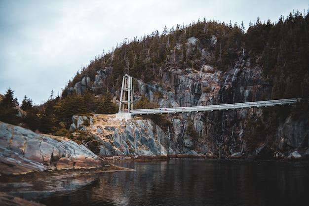 Pont blanc sur la rivière entourée d'arbres