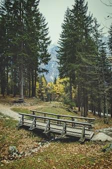 Pont en bois dans les alpes slovènes entouré de sapins en saison d'automne