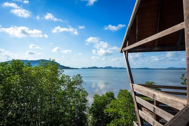 Pont en bois dans la mangrove de la forêt dans la province de chon buri, thaïlande.