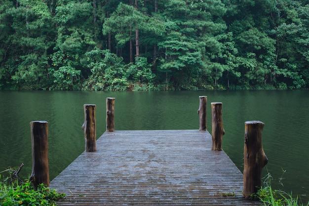Pont en bois dans le réservoir, saison des pluies.