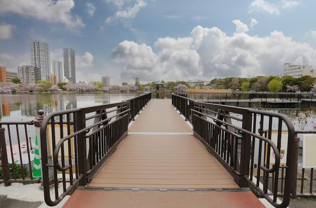 Pont de bois dans la vue sur le parc d'ueno à la préfecture de tokyo, au japon.