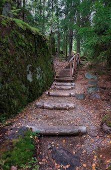 Pont en bois et escaliers dans la forêt du nord entre les rochers et les sapins, un jour d'été. eco trail park monrepo à vyborg