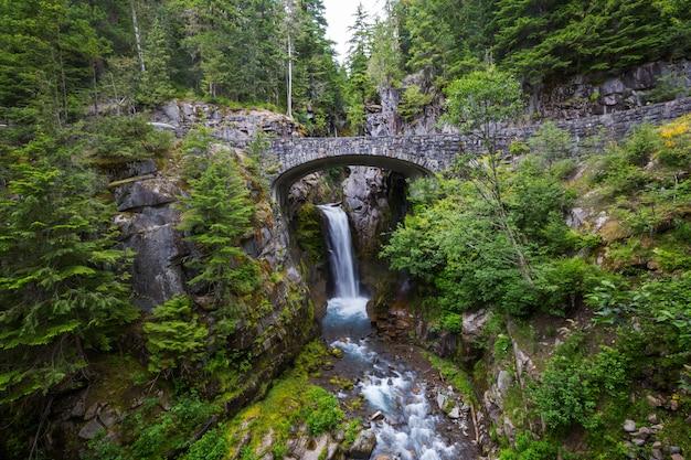 Pont sur une cascade à mount rainier national park, washington, usa
