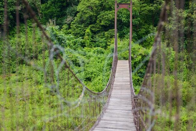 Pont de corde dans le parc national de kaeng krachan