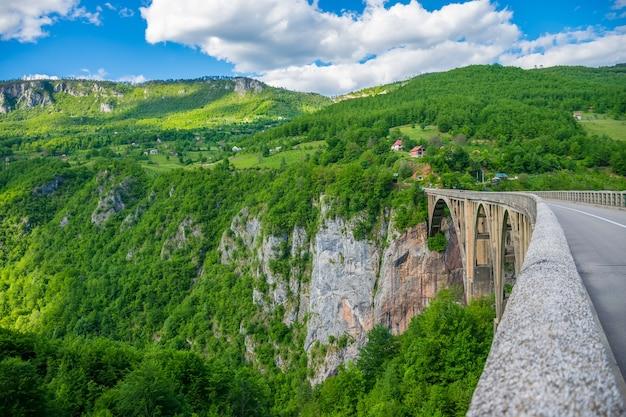 Le pont djurdjevic traverse le canyon de la rivière tara au nord du monténégro