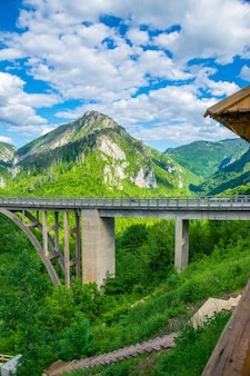 Le pont djurdjevic traverse le canyon de la rivière tara au nord du monténégro.