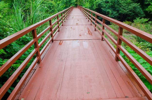 Pont de la forêt tropicale dans le parc national de khao yai, en thaïlande