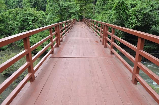 Pont de la jungle, parc national de khao yai, thaïlande