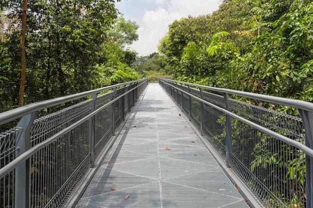 Pont métallique moderne sur la jungle