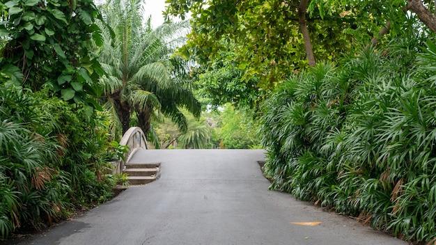 Pont à pied dans le jardin du parc public suan luang rama ix bangkok thaïlande fond