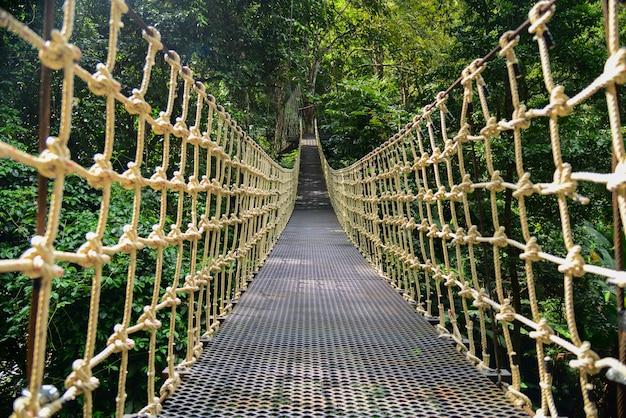 Pont pont suspendu de la forêt tropicale, traversant la rivière, ferriage dans les bois