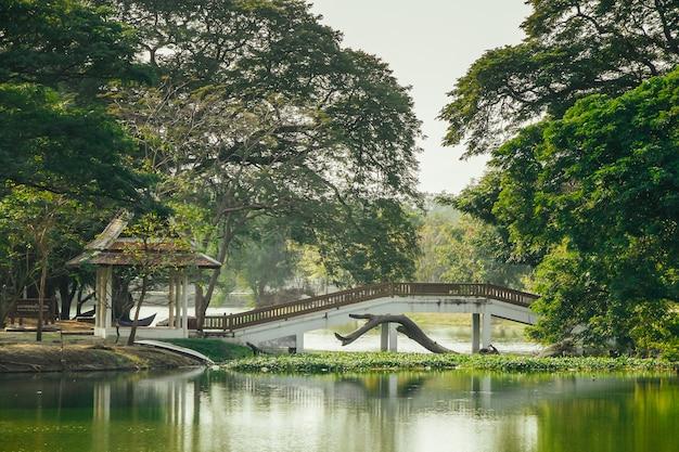 Pont sur la rivière à ayutthaya