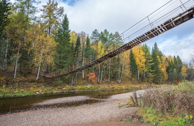Pont suspendu en bois sur la rivière dans la forêt