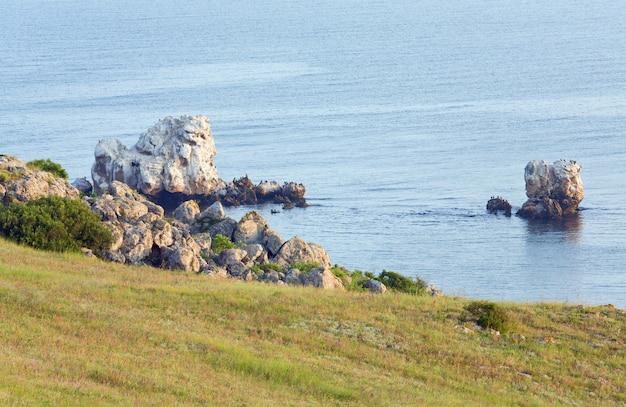 Population de cormorans sur le cap kazantip (crimée, ukraine).