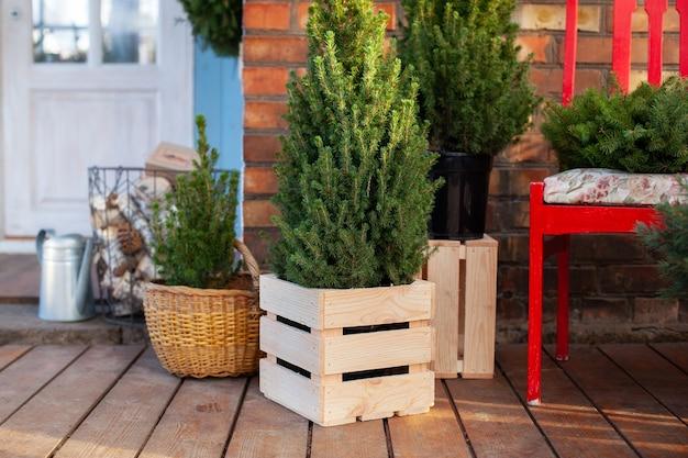 Porche de la maison est décoré d'arbres de noël.