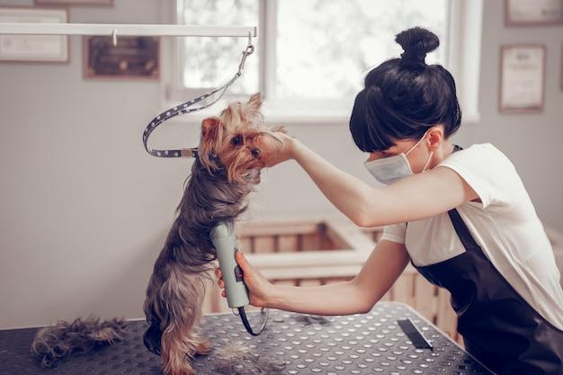 Port du masque. jeune femme qui travaillait avec un chignon portant un masque tout en rasant un chien mignon