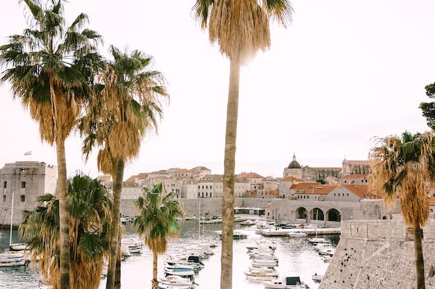 Le port du vieux port est porporela près des murs de la vieille ville de dubrovnik croatie la vue de