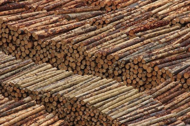 Port industriel avec cargo et troncs d'arbres
