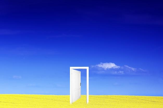 Porte dans un champ jaune