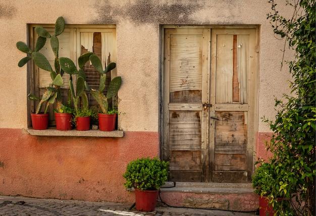 Porte de la vieille maison et cactus sur le rebord de la fenêtre