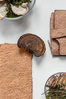 Portefeuille en cuir végétalien fabriqué à partir de mycélium de champignon et d'échantillons de cuir bio végétalien vue de dessus, concept écologique